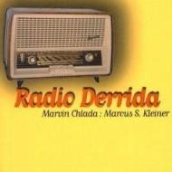 Radio Derrida. Pop-Analysen II, Aschaffenburg.